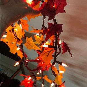 Fall leaf lights